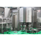 6000BPH Glass Bottle Juice Filling Machine